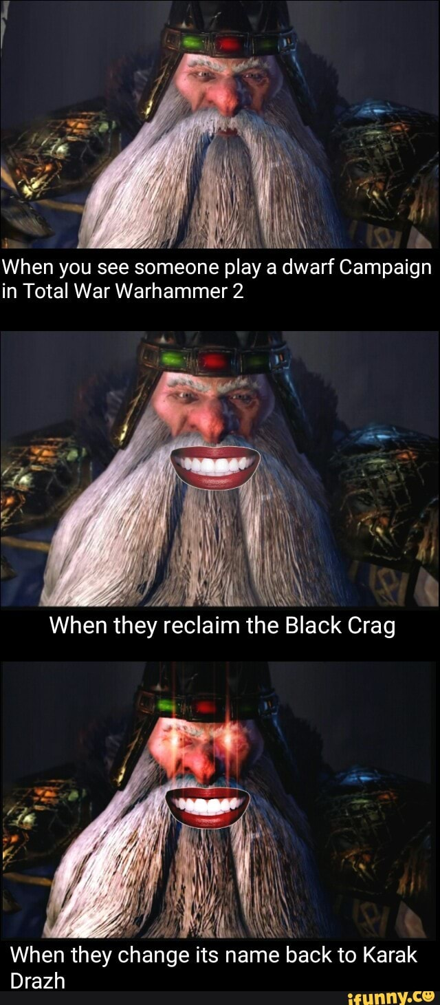 When You See Someone Play A Dwarf Campaign In Total War Warhammer