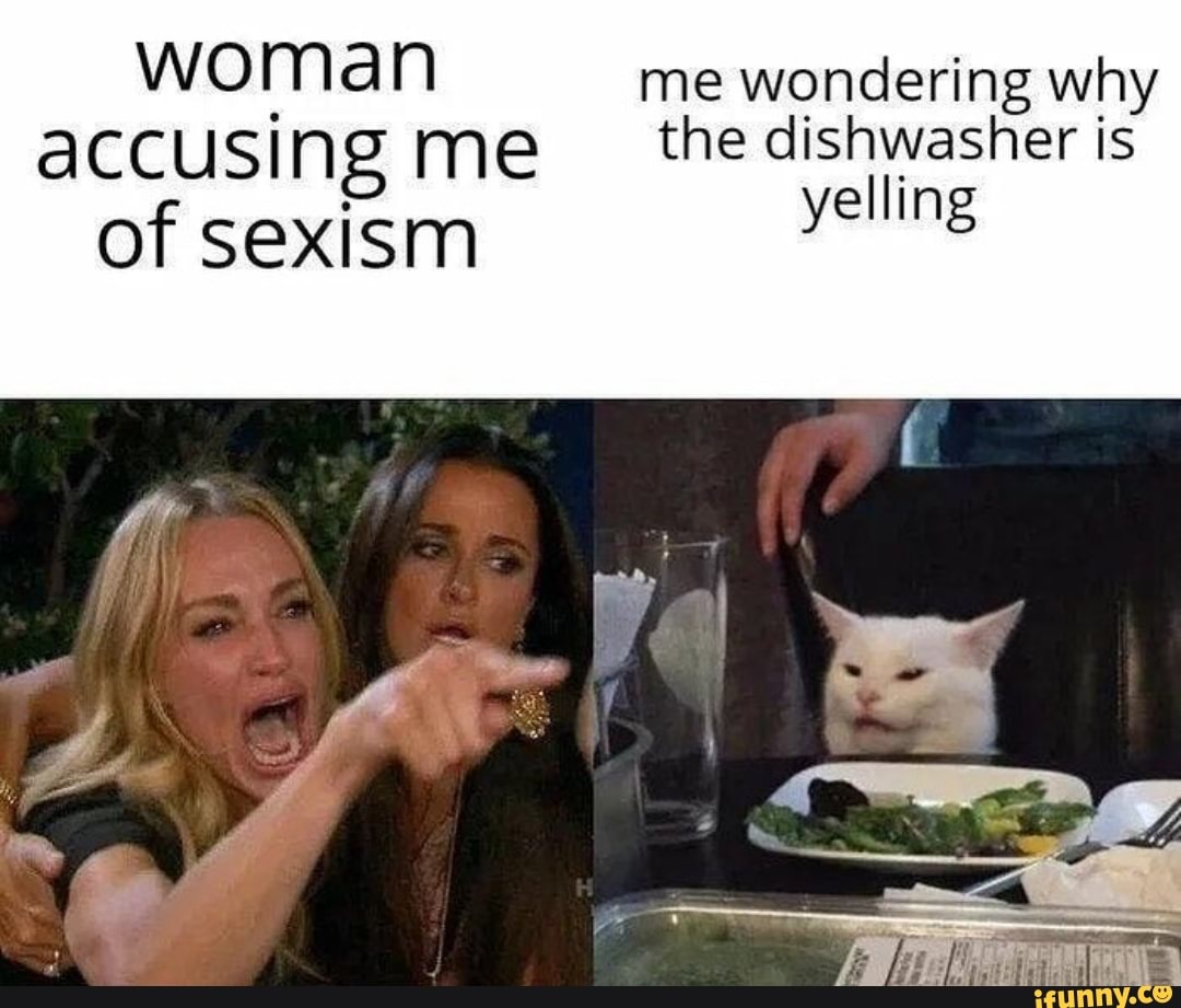 Lady Yelling At Confused Cat Memetemplatesofficial