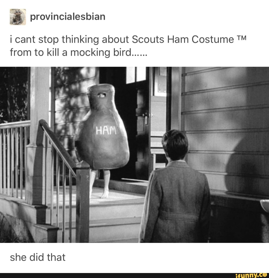 I Cant Stop Thinking About Scouts Ham Costume Tm From To Kill A