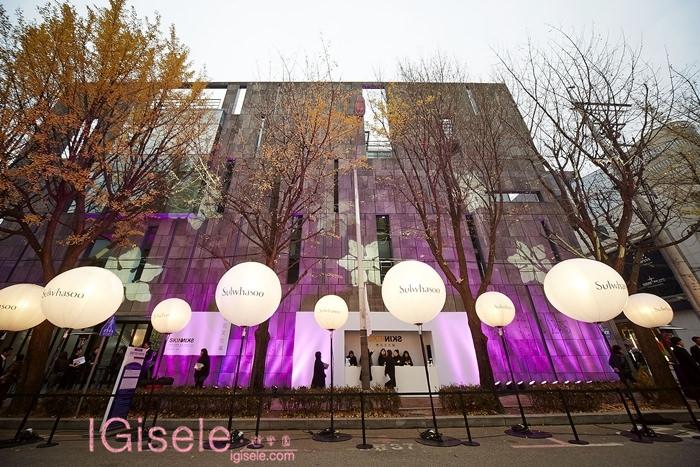 2014雪花文化展 SKIN=NIKS 戶外燈光投影 2