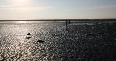 台中景點|大安龜殼海濱生態公園 約會X單車遊X看日落X紅樹林超冷門景點(近大甲)