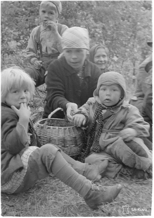 Evakot ruokailevat metsässä.