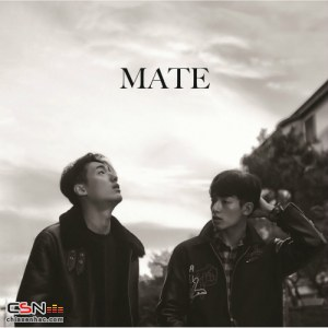 Mate - THE END (Homage To Kashmir).mp3