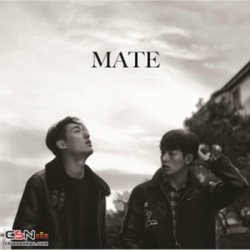 Mate - THE END (Homage To Kashmir) MP3