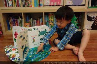 同大爺書報●適合0-3歲小人的硬頁書●艾瑞.卡爾書單和Peppa's Busy Day時鐘書