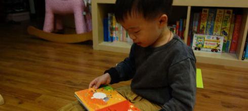 [同大爺書報]適合1-3歲小孩的硬頁書●(六)Farmyard Friends●農場好朋友玩具書