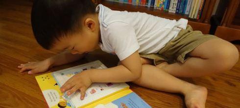 [同大爺書報] 實用又有趣的圖卡點讀書●Listen and Learn First English Words●