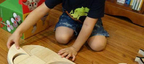[已結團] 百變好玩●Miller Goodman PlayShapes●英國美術圖書館設計師的積木~