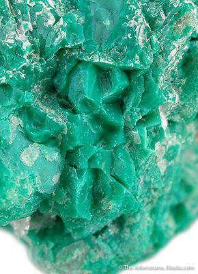 Greenish Turquoise Nepouite With Quartz Dominican Republic IRocks Fine Minerals