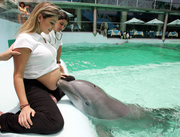 Peruvian Napadenschi who is eight month pregnant is touched by a dolphin during therapy session in Lima