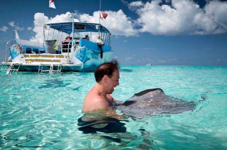 Sting Ray City Is a Stunning Tourist Attraction