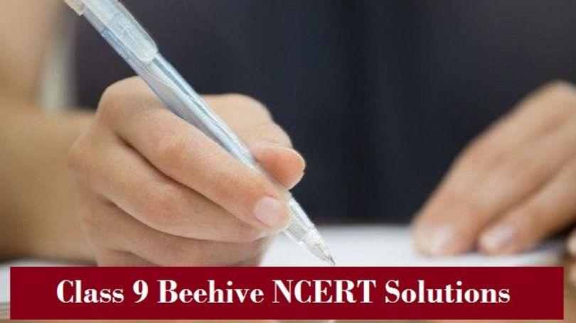 class9 beehive ncert solutions
