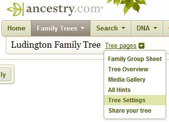 Ancestry.com Tree Settings