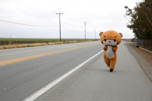 Temui pria berjas beruang yang berjalan dari Los Angeles ke San Francisco – Gaya hidup