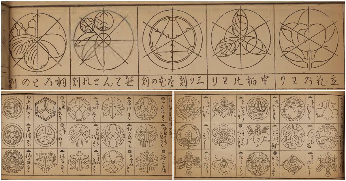 日本家徽紋飾裝飾藝術