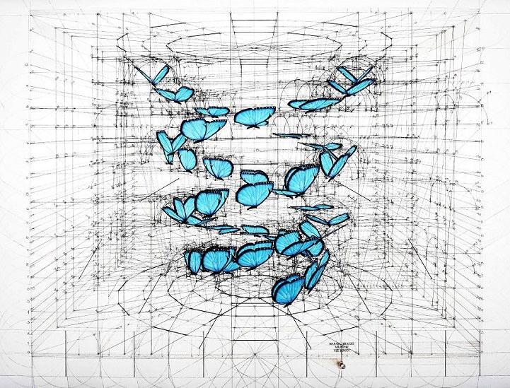 藍色蝴蝶手繪軌跡