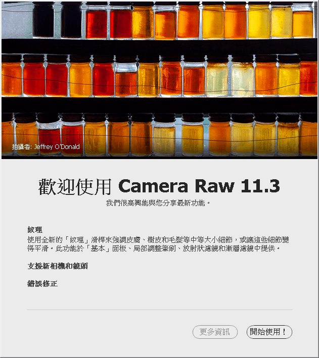 Camer Raw 11.3