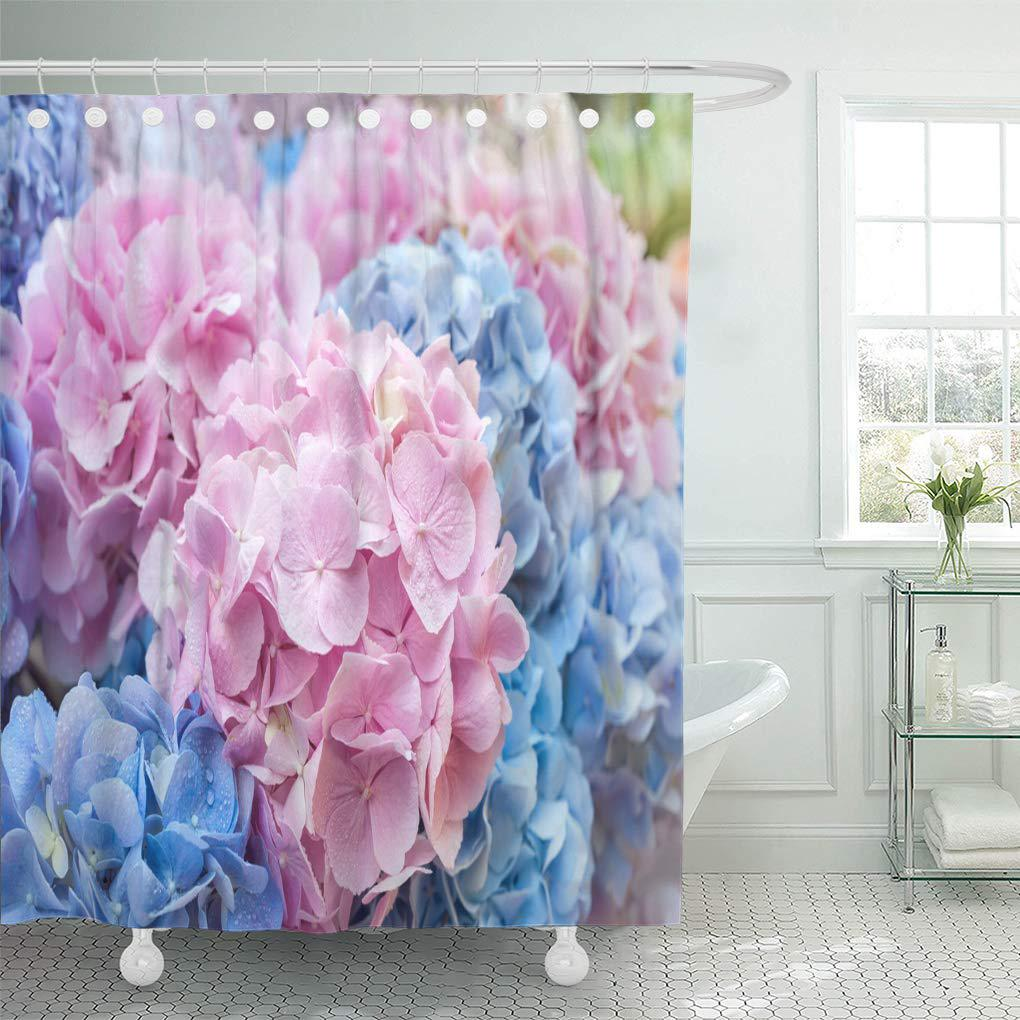 colorful beautiful blue and pink flowers of hydrangea natural shower curtain 66x72inch 165x180cm
