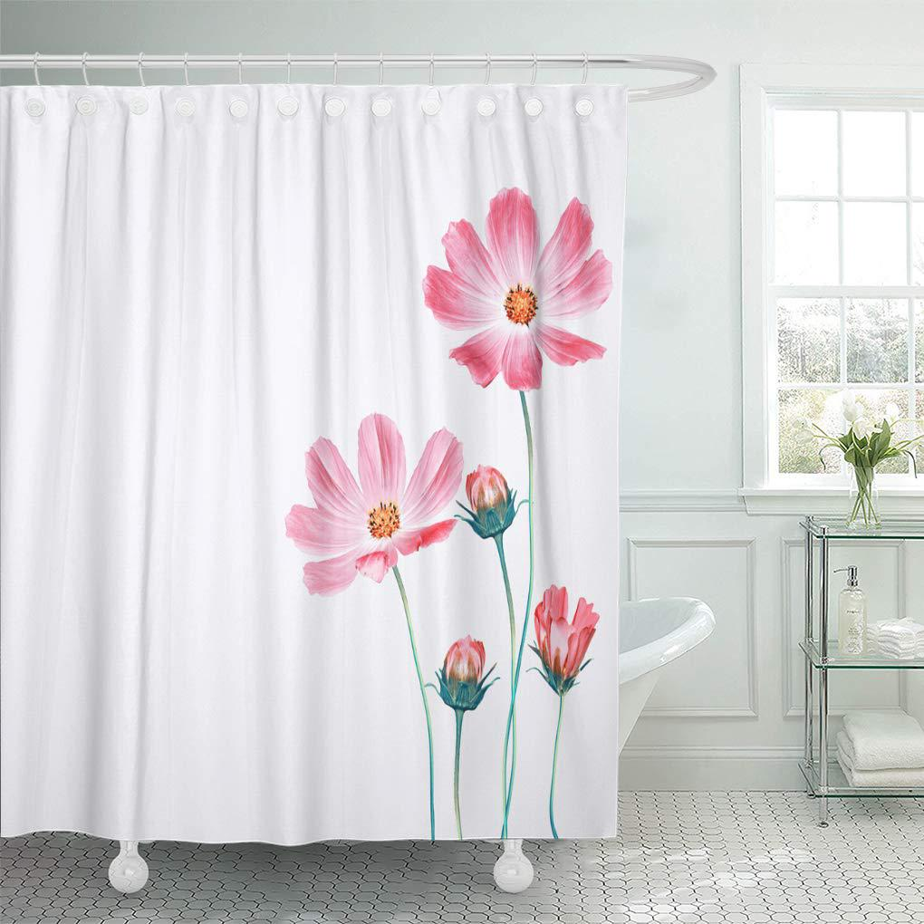 arrangement bright colorful cosmos flowers isolated on white background autumn shower curtain 60x72inch 150x180cm