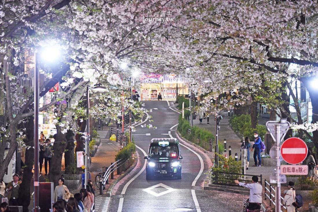 東京,澀谷,澀谷櫻花街道,櫻花