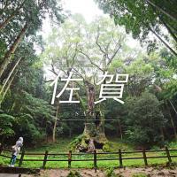 佐賀景點、佐賀自由行|台灣虎航直飛佐賀、佐賀自駕、住宿、景點25+