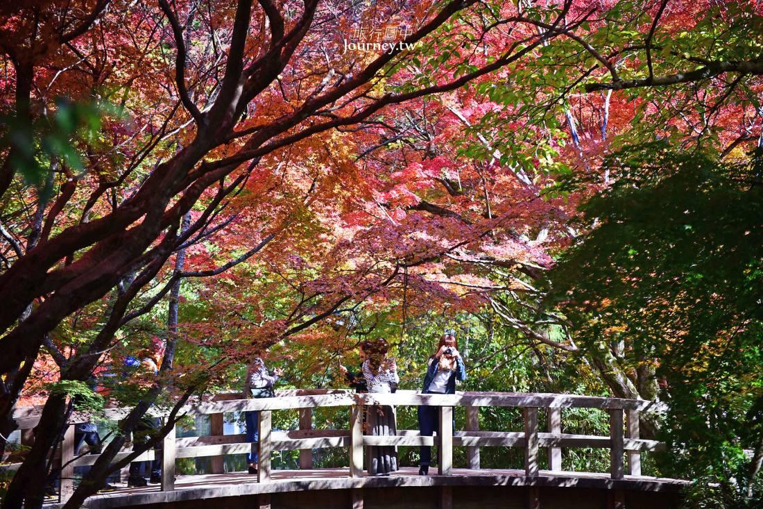 Japan,日本,Oita,Kyushu,Yufuin,大分景點,大分自由行,九州自由行,由布院景點,由布院住宿,由布院自由行,湯布院,由布院交通,由布院賞楓