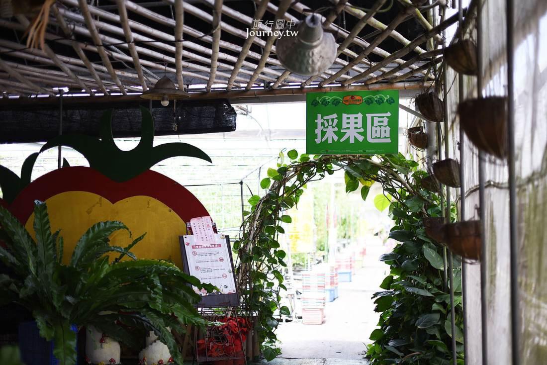 新竹,關西,金勇DIY番茄農場,新竹景點,觀光農場,關西景點,新竹縣