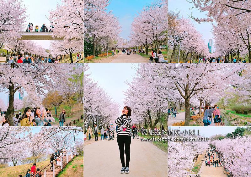 【韓國首爾賞櫻】首爾林站\首爾林서울숲櫻花散步路,清楚地圖、照片路線帶你去!