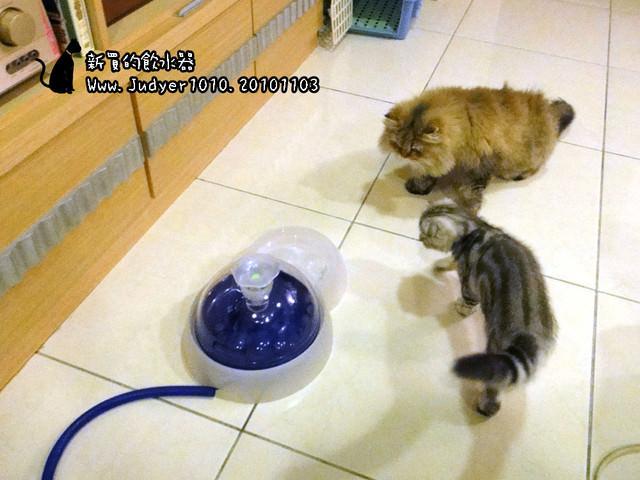 貓咪札記:新購入飲水機~(加拿大赫根Hagen貓用活水飲水機3L)
