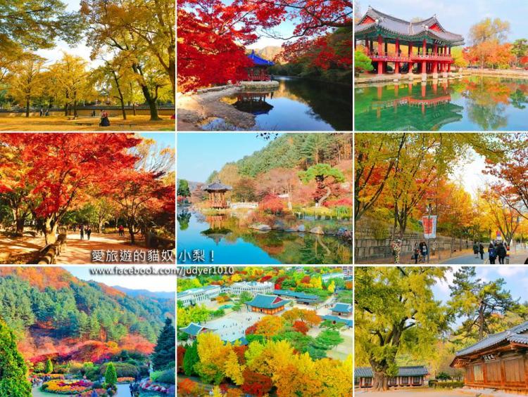 【韓國賞楓、銀杏、紫芒】韓國必去賞楓景點推薦與2018韓國楓葉預測