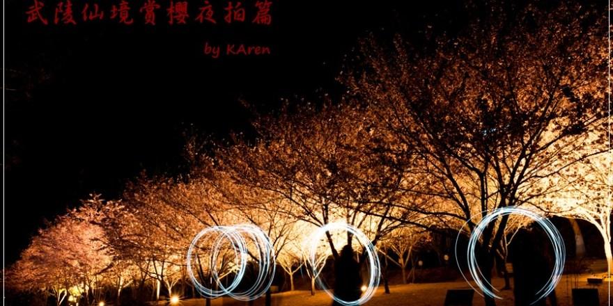 [台中和平] 2013 武陵仙境賞櫻~夜拍篇
