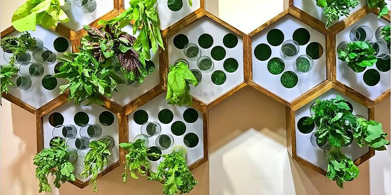 台中北屯滷味   蜜蜂慢食(昌平路一段)。很不一樣的滷味店,食材新鮮、無過多調味、自製湯頭多選擇,值得細細品嚐。