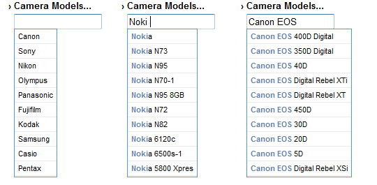 Camera Search in Picasa