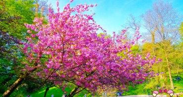 巴黎賞櫻》Parc des Buttes-Chaumont肖蒙山丘公園,19區熱鬧超美綠地公園