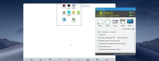 duckcapture screenshot
