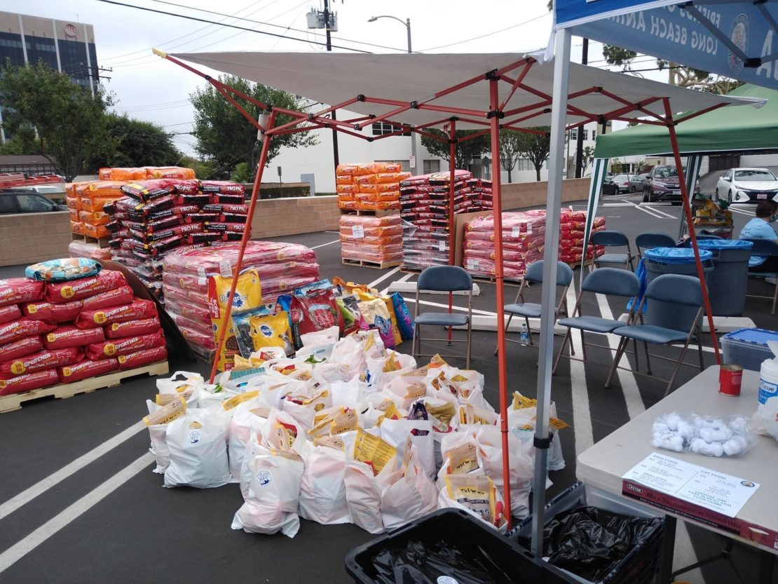 bags and bags and pallets and pallets of pet food sit in a parking lot.