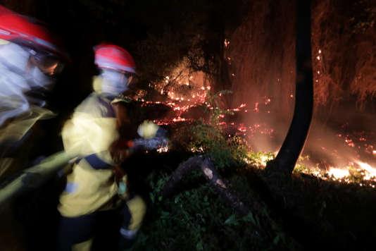 Des pompiers en intervention à Castagniers, près de Nice.