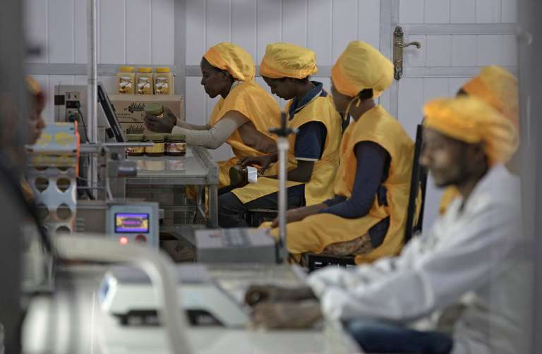 Welele manufacturing unit staff pack honey pots in Mekele, Ethiopia, on March 30, 2017. &quot;title =&quot; ZACHARIAS ABUBEKER / AFP &quot;onload =&quot; lmd.pic (this); &quot;onerror (19459005) <span data-recalc-dims=