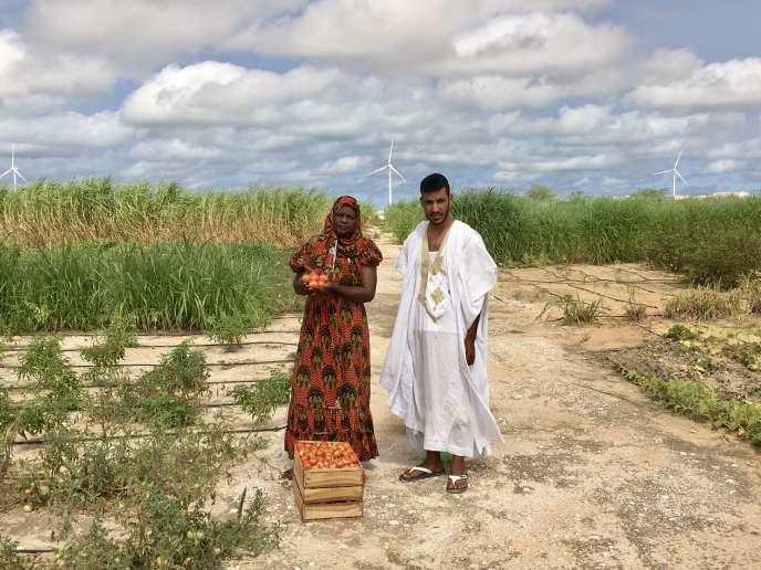 Fatimatou Mint Deya et Mohamed Mokhtar, deux élèves dela ferme pédagogique El Jenna, à la sortie de Nouakchott, en septembre 2020.