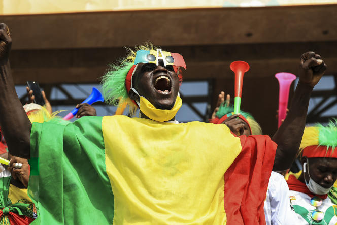 During the semi-final of the African Nations Championship (CHAN) between Mali and Guinea, on February 3 in Douala, Cameroon.