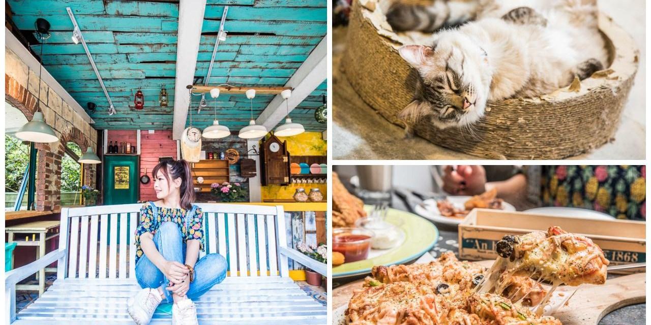 [桃園復興] 超可愛店貓駐場,粗獷美式裝潢氛圍網美必訪!ZOO ZOO 假期