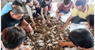 【台南市安平區-生鮮】安平漁港最便宜的10元螃蟹 #丸珍水產#