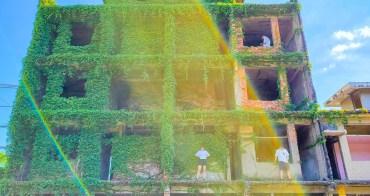 【台南景點】意外闖進台南秘境小屋|好拍的巨人樹屋~~台南綠色房屋