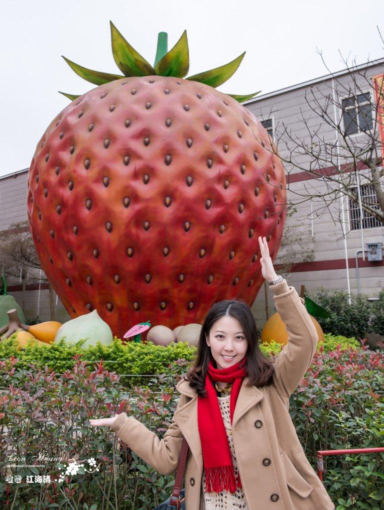 大湖景點推薦》草莓文化館 – 創意草莓美食
