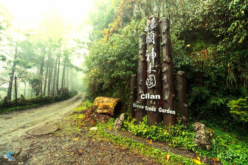 宜蘭景點推薦》棲蘭神木園 – 台灣世界遺產潛力點