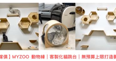 【貓咪傢俱】MYZOO 動物緣|客製化貓跳台|無預算上限打造夢幻貓牆