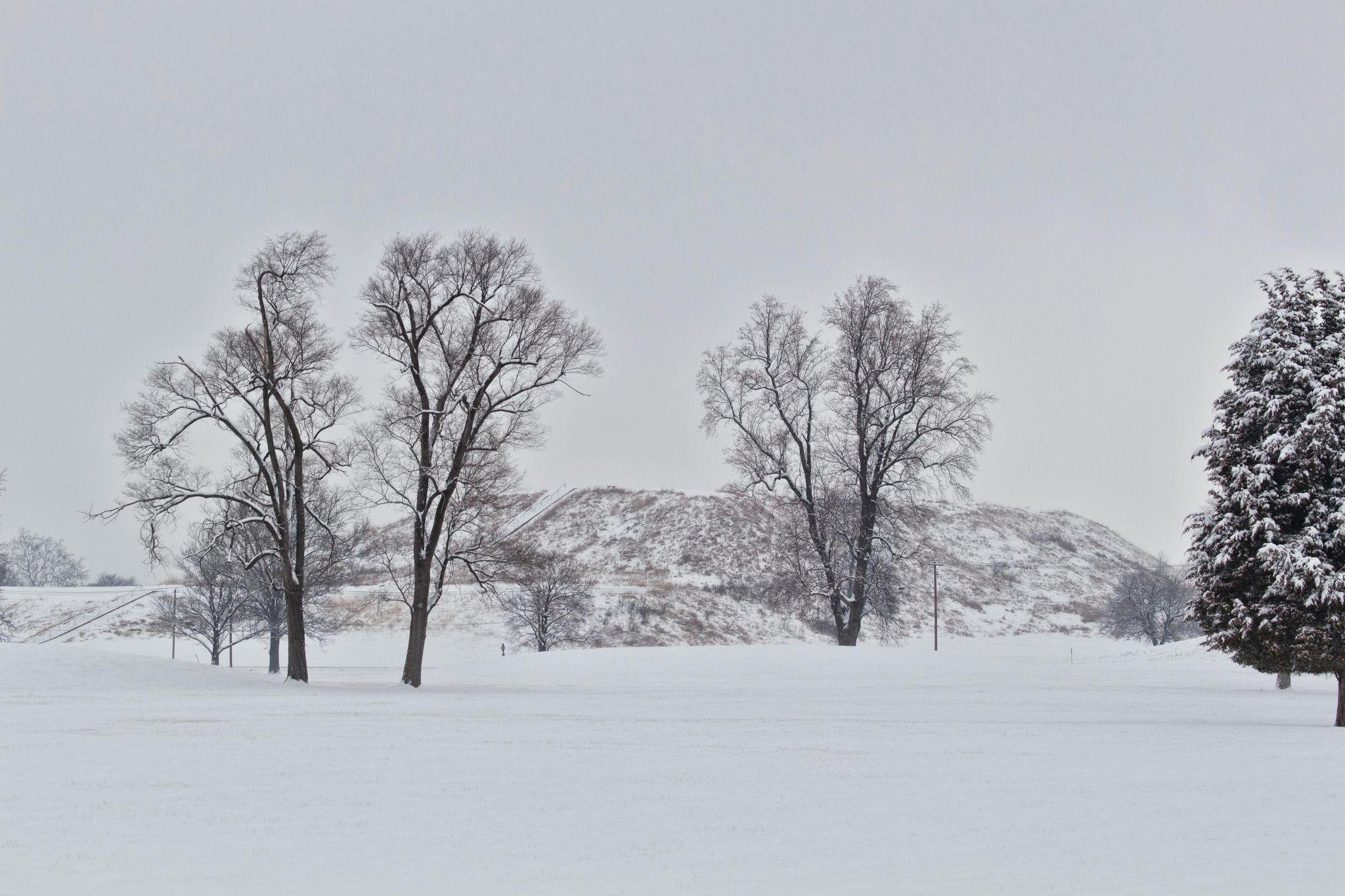 Cahokia Mounds State Historic Site Usa