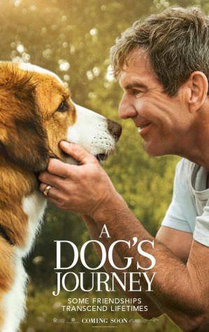 【影評】《狗狗的旅程》無可取代的情感羈絆