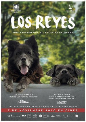 【影評】《犬犬風塵》從狗狗雙眼看見這個世界