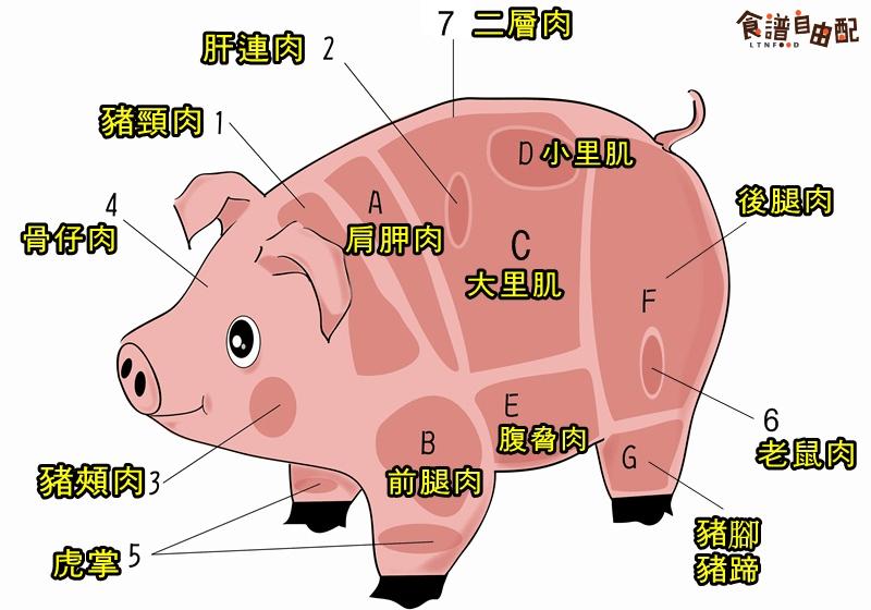 【圖解】肩胛肉?小里肌?常見豬肉部位一次認識 - 食譜自由配 - 自由電子報